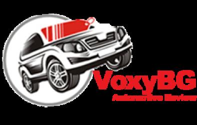 VoxyBG Site